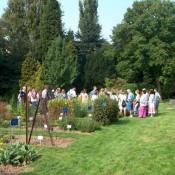Visites guidées thématiques au Jardin Massart