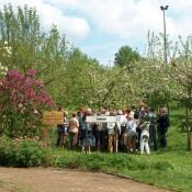 Visite guidée du Jardin Botanique  Jean Massart