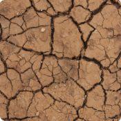 """Matinée """"Changements climatiques"""" #2"""
