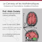 Le Cerveau et les Mathématiques : Croissance et Traumatisme, Modèles et Solutions