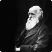 Darwin Day : matinée scolaire