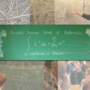 Brussels Summer School of Mathematics